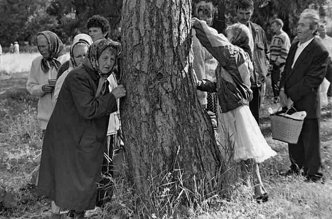 Kult drzew w Rosji