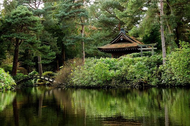 Zen by Janet Ramsden