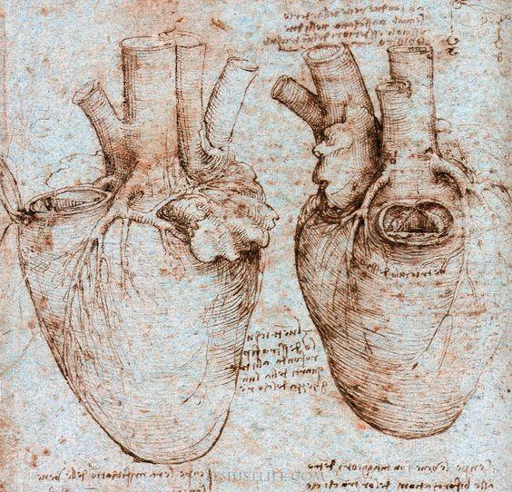da vinci heart